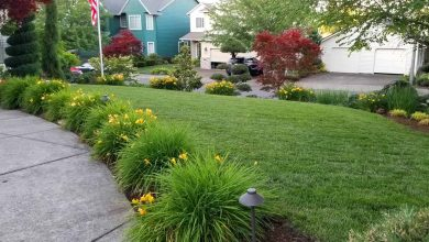 Photo of Natural Gardening Yard Maintenance