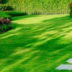 Landscaping Maintenance Service Portland