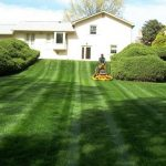 Yard Maintenance Beaverton Oregon