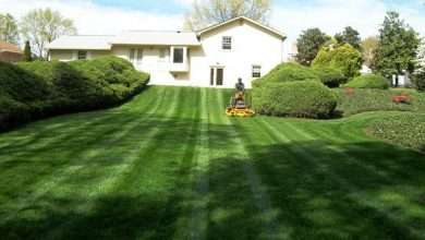 Photo of Landscape Maintenance Agreement
