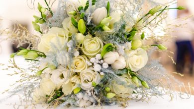 Photo of Top-7 Popular Flowers that is Perfect for Women's Day