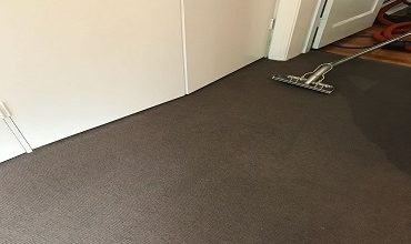 Photo of WET CARPETS –THE ORIGIN OF MOLDS
