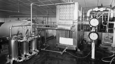 Photo of Uses of Machinery in Dairy Industries