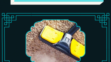 Photo of Carpet cleaning made easy-peasy
