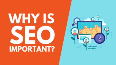 Photo of Why SEO Is More Important Than Ever?