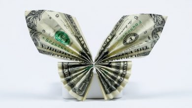 Photo of Best Ways To Make Butterfly Money Lei And Samoan Money Lei