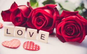 Symbol love-MyFlowerTree