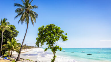 Photo of 7 Things to Do While in Diani Beach, Kenya