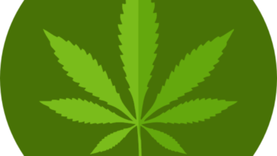 Photo of Marijuana SEO is a Priority if You Want to Rank Your Shop
