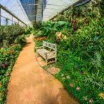 Garden Design Ideas to Grow More in Small Space