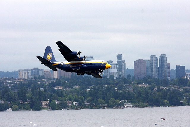 A plane flying above Bellevue.