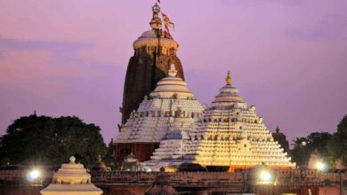 Photo of PURI TOUR PACKAGE
