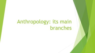 Photo of The Predominating Branches of Anthropology