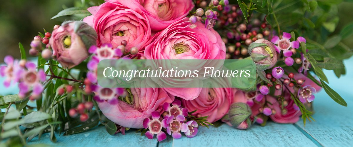 congratulations flowers- Congratulate Someone Personally with these Amazing Flowers