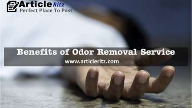 Benefits of Odor Removal Service