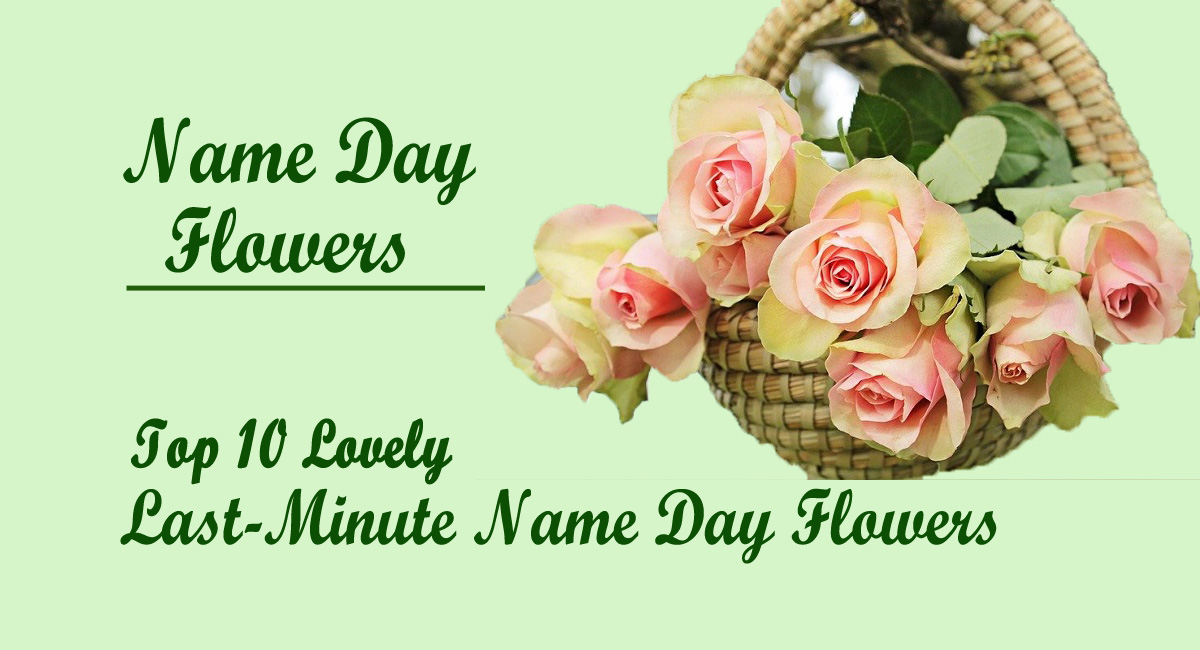 happy name day- Top 10 Lovely Last-Minute Name Day Flowers
